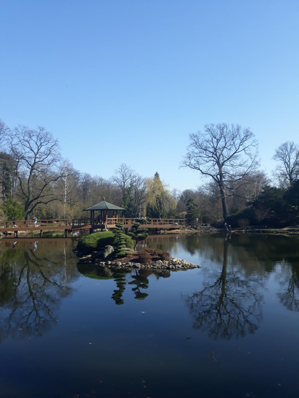 Wroclaw Giardino giapponese